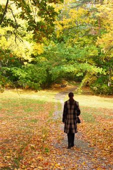 Free Young Woman Walking In Park Stock Image - 6700341
