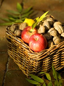 Free Apples And Walnuts Stock Photography - 6700972