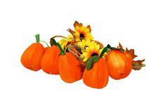 Free Small Pumpkins Royalty Free Stock Image - 6701556