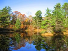 Free Fall Reflections, Maine Stock Photos - 6701913