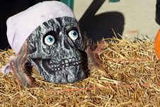Free Halloween Skull Stock Image - 6702261