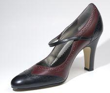 Free High Heel Shoe Royalty Free Stock Photos - 6703848