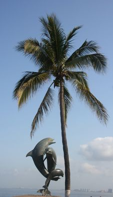 Dolphin Statue And Palm Tree Royalty Free Stock Photo