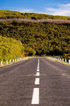 Mountain Road In Madeira Island Stock Image