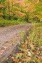 Free Muddy Road Through Fall Foliage. Stock Photo - 6715610