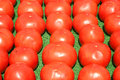 Free Tomatoes Lined Up For Sale Stock Photo - 6719330