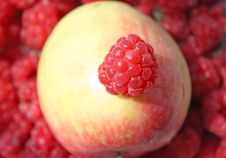 Free Raspberry On Apple. Royalty Free Stock Photography - 6711027