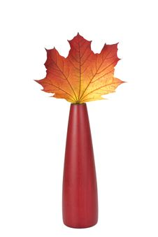 Free Maple Leaf Stock Images - 6714224