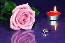 Free Rose With Diamond Ring Stock Photos - 6715383