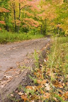Free Muddy Road Through Fall Foliage. Stock Photo - 6715610