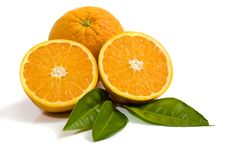 Free Oranges Isolated On White Stock Image - 6715891