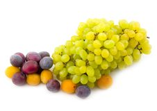 Free Yellow Plum And Prunes With Grapes Royalty Free Stock Photos - 6716278