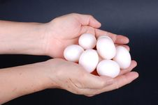 Free Eggs In Hand Stock Photography - 6718232