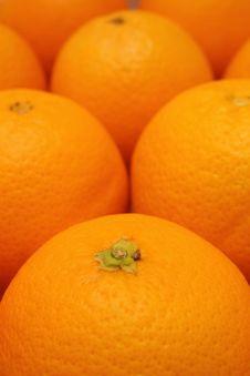 Free Oranges Stock Photos - 6718263
