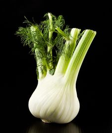 Free Fennel Royalty Free Stock Images - 6718709