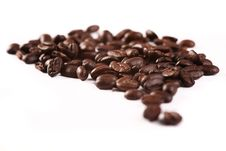 Free Coffee Theme Royalty Free Stock Images - 6719089