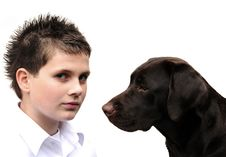 Labrador And Boy Stock Photo