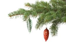 Free Fir Tree Branch With Decoration Royalty Free Stock Photos - 6719648