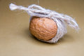 Free Walnut Tied With Twine On A Brown Background Front Light Stock Image - 67133091