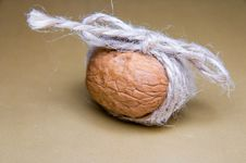 Walnut Tied With Twine On A Brown Background Front Light Stock Image