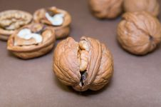 Free Cracked Walnut In The Middle On Blurred Background &x28;gray Shade&x29; Royalty Free Stock Photography - 67133117