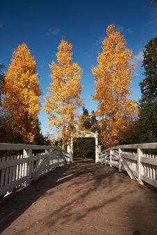 Free Autumn Stock Photography - 6720222