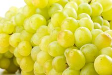 Free Fresh Grapes Stock Photos - 6720473