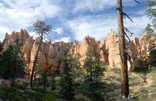 Free Bryce Canyon Royalty Free Stock Photo - 6720605