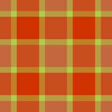Free Modern Fashion Plaid Royalty Free Stock Photography - 6722547
