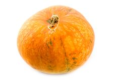 Free Ripe And Useful Pumpkin Royalty Free Stock Photos - 6724158