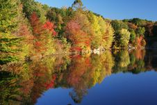 Free Autumn Colors Reflected Royalty Free Stock Photos - 6724838