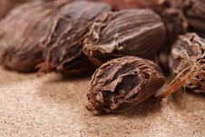 Free Black Cardamom Pods On Wood Macro Royalty Free Stock Photography - 6725327