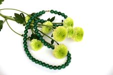 Free Malachite Necklace And Flowers Royalty Free Stock Photos - 6727098