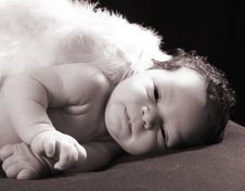 Free Baby Angel Stock Images - 6728014