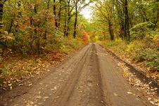 Free Autumn Road Royalty Free Stock Photos - 6728728