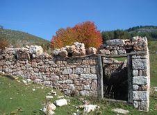 Free Ruins Royalty Free Stock Photo - 6728875