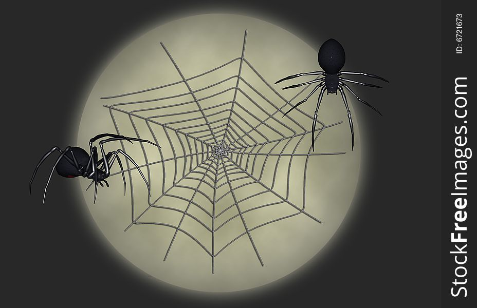 Black widow illustration 6