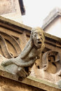 Free The Gargoyles Of Notre Dame Royalty Free Stock Photography - 6735887