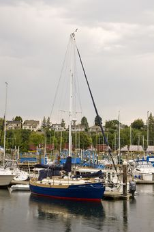 Free Blue Sailboat In Rainy Harbor Stock Photo - 6732160