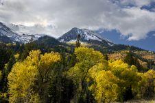 Free Autumn Splender Royalty Free Stock Images - 6732219