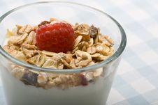 Free Deliciously Fresh Yogurt And Muesli Stock Images - 6733304