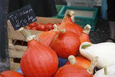 Free Red Pumpkin Royalty Free Stock Image - 6733926