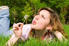 Free Girl Blowing On The Dandelion Royalty Free Stock Photo - 6735405