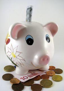 Free Piggy Stock Photo - 6737080