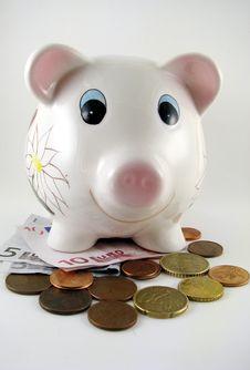 Free Piggy Stock Photos - 6737103