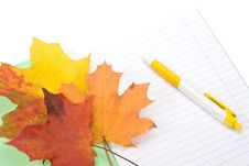 Writing-book, Pen And Autumn Leaves Stock Photo