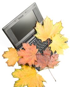 Free Notebook And Autumn Leaves Royalty Free Stock Photo - 6737535