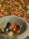 Free Fountain And Foliage Royalty Free Stock Photos - 6741188