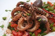 Free Octopus Royalty Free Stock Photography - 6743477