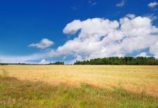 Free Beautiful Summer Landscape Stock Photo - 6744200